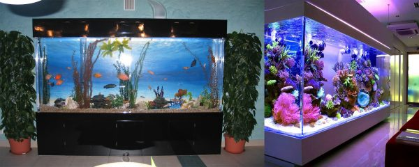 Jūriniai-gėlavandeniai-akriliniai-akvariumai