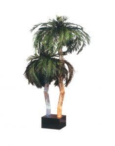 Vandens-burbulų-palmės