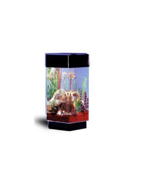 Šešiakampis-akvariumas