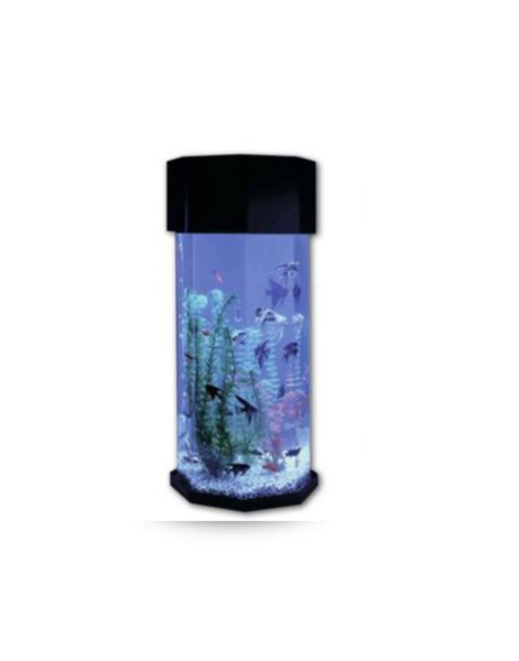 Aštuonkampis-akvariumas