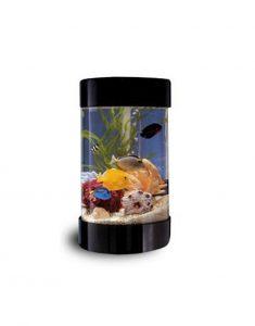 Apskritas-akvariumas