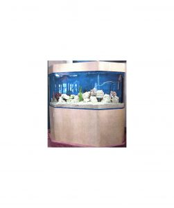 Marine-Aquarium-Flat-Back-Hexagon-CFB
