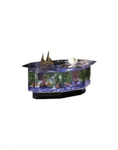 Aquarium-Coffee-Table-Octagon