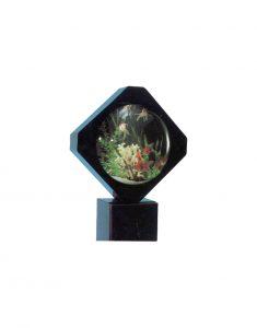 пузырь-аквариум