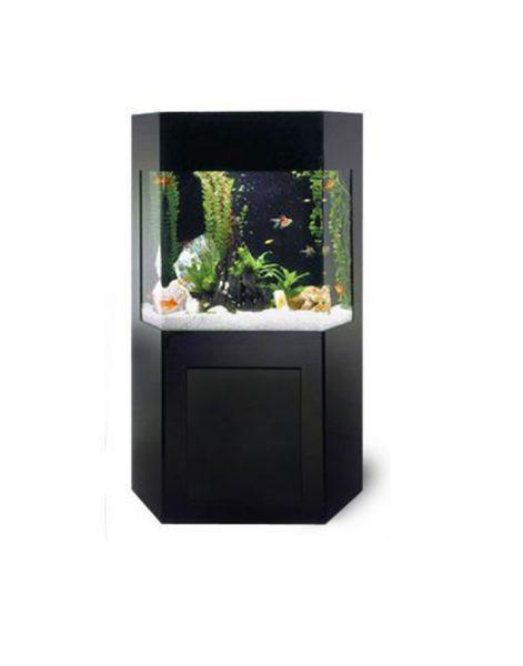 Tripusis-Šešėlio-erdvės-akvariumas