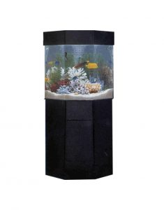 Pentaview-Pentagon Custom-Aquarium